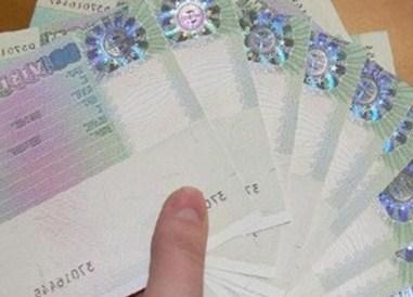 «Длительные визы» в Еврозону